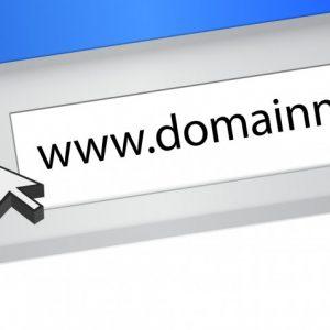 Erfolgsfaktoren für Domainwert